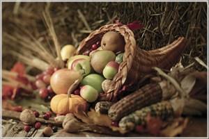 豊富な収穫